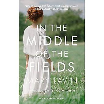 In the Middle of the Fields