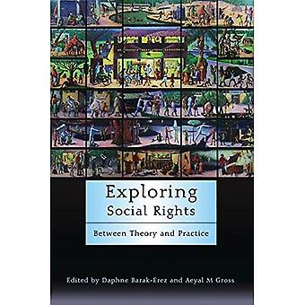 Exploring Social Rights: Between Theory and Practice