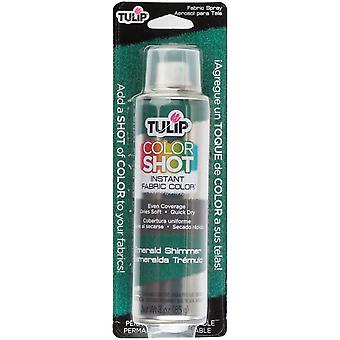 Tulip Color Shot Instant Fabric Color Spray 3oz-Emerald Shimmer CLRSH-34971