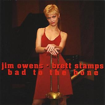 Brett Stamps - Bad to the Bone [CD] USA import