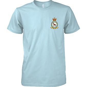 School Of Physical Training - RAF Royal Air Force T-Shirt Colour