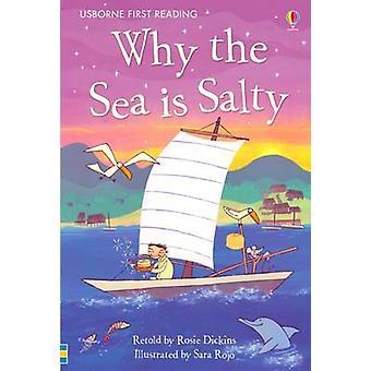 Dlaczego jest morze słone? przez Rosie Dickins - Sara Rojo - 9780746096895 Bo