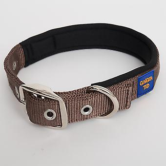 Ginger Ted Nylon Padded Dog Collar Brown (3 sizes)