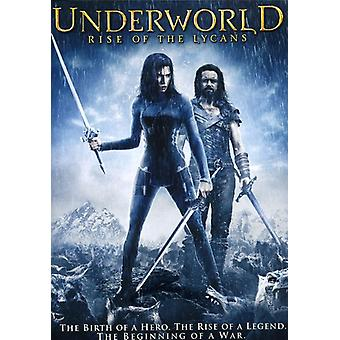 Underworld: Rise of the Lycans [DVD] USA import