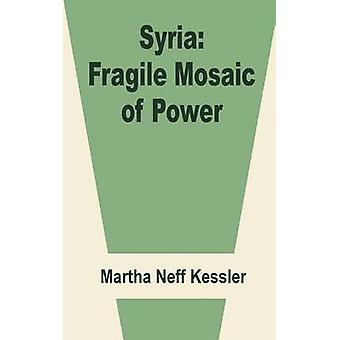 Syria Fragile Mosaic of Power by Neff Kessler & Martha