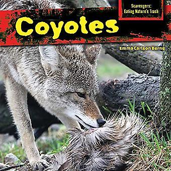 Coyotes (asätare: äta naturens papperskorgen)