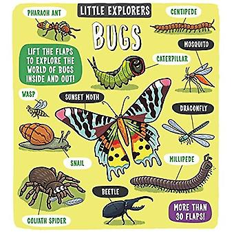 Little Explorers Bugs (Little Explorers)