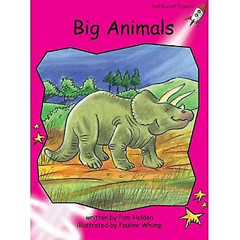 Big Animals by Pam Holden - Pauline Whimp - 9781877506154 Book