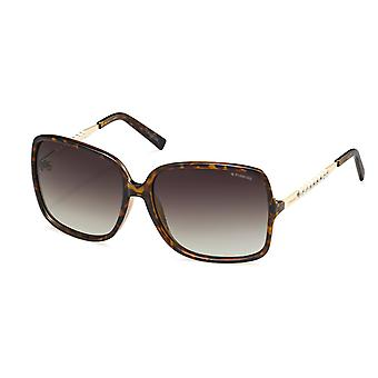 Polaroid PLD5007 Havana Brown women's sunglasses