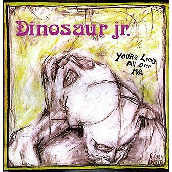 Dinosaur Jr. - You're Living All Over Me [Vinyl] USA import