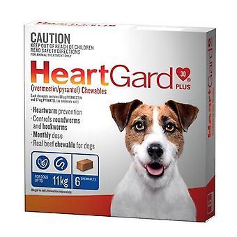 Heartgard Plus mastique azul Pack 6