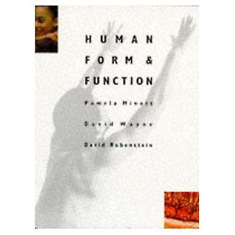 Funzione e forma umana