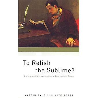 To Relish the Sublime: Culture and Self Realization in Postmodern Times