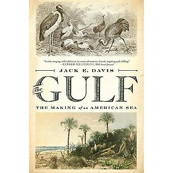 The Gulf - The Making of An American Sea by Jack E. Davis - 9781631494
