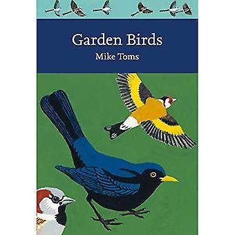 Garden Birds (Collins New Naturalist Library, Livre 140) (Collins New Naturalist Library)
