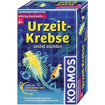Science kit Kosmos Mitbring-Experimente Urzeit-Krebse 659219 8 years and over