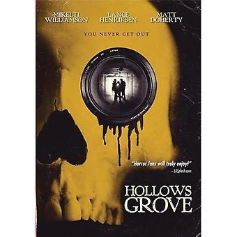Lavninger Grove [DVD] USA importerer