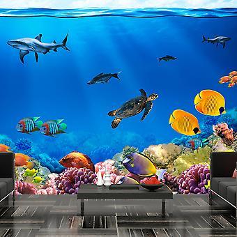 Tapete - Unterwasser-Königreich