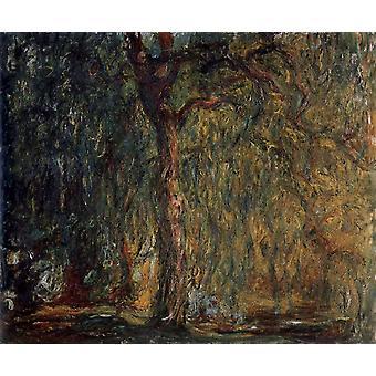 Weeping Willow, Claude Monet, 60x50cm