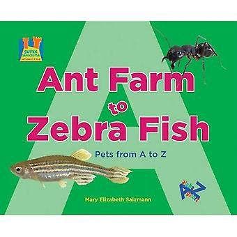 Ant Farm to Zebra Fish: Pets from A to Z (Super Sandcastle: Let's Learn A to Z)