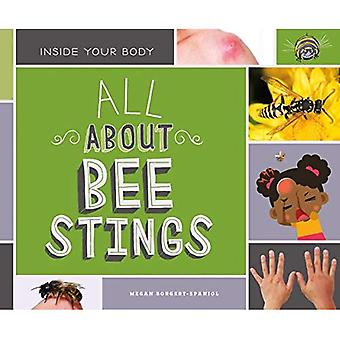 All About Bee Stings (Inside Your Body)
