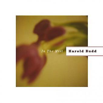 Harold Budd - i tåge [CD] USA import
