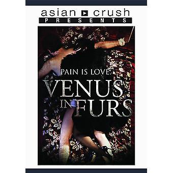 Venus i pels [DVD] USA importerer