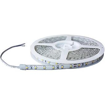 LED strip open cable ends 24 V 100 cm Cold white Barthelme 51618415 51618415