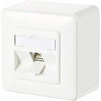 Network outlet Surface-mount CAT 6A 1 port Metz Connect