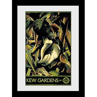Transport For London Kew Gardens Framed Collector Print