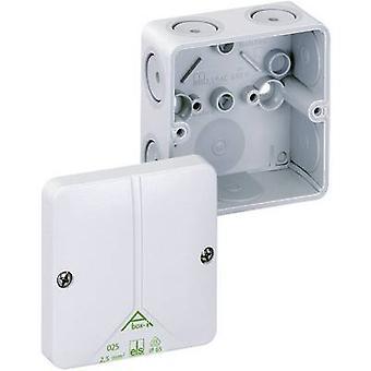 Spelsberg 49090601 Joint box (L x W x H) 110 x 110 x 67 mm Grey IP65