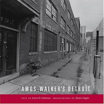 Amos Walker's Detroit (Painted Turtle Book)