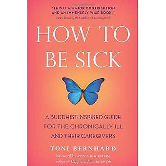 Hur kan man vara sjuk: A Buddhist-Inspired Guide för kroniskt sjuka och deras vårdgivare