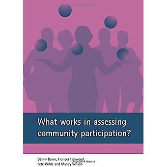 Ce qui fonctionne dans l'évaluation de la Participation communautaire?: apprentissage des pilotes régénération