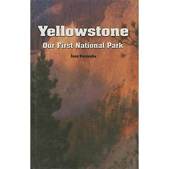 Yellowstone - Our First National Park by Jane Pecorella - J Pecorella