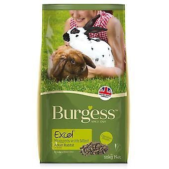 Burgess Excel Junior And Dwarf Rabbit Nuggets With Mint 4kg