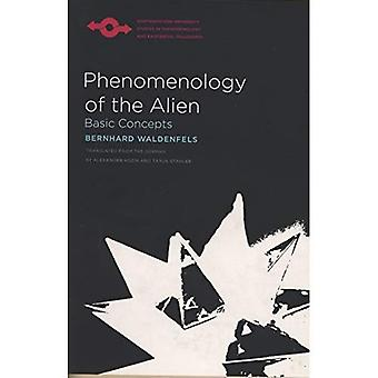 Phénoménologie de l'étranger