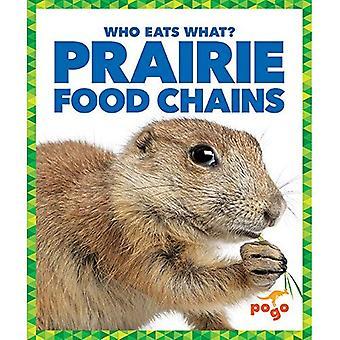 Prairie Food Chains (Who Eats What?)