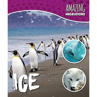 Ice by Harriet Brundle - 9781786372246 Book