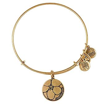 Alex en Ani kleindochter goud Bangle A13EB07RG