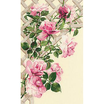 Pink Roses On Lattice Counted Cross Stitch Kit 13.75