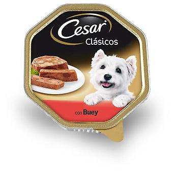 Cesar Cesar Beef Tub 150 G (Dogs , Dog Food , Wet Food)