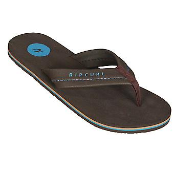 Rip Curl Mens Sandals ~ MAVS brown blue