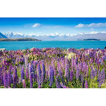 Wallpaper Mural Montain Lake with Flowers
