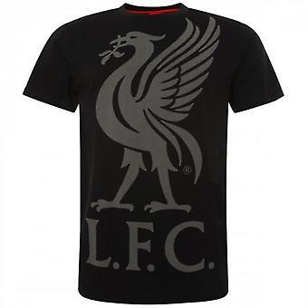 Liverpool Liverbird T Shirt Mens Black L