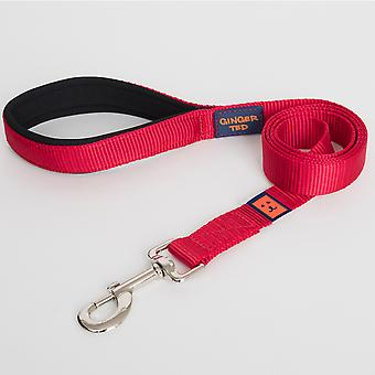 Ginger Ted Nylon Padded Dog Lead Red (2 sizes)