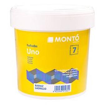 Monto pinturas One smooth facades (DIY , Painting , Painting , Walls and roofs)