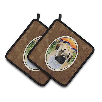 Carolines Treasures  SS8197PTHD Anatolian Shepherd Pair of Pot Holders