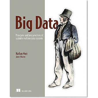Big Data - Principles and Best Practices of Scalable Realtime Data Sys