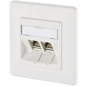 Network outlet Flush mount Insert with main panel and frame 2 p